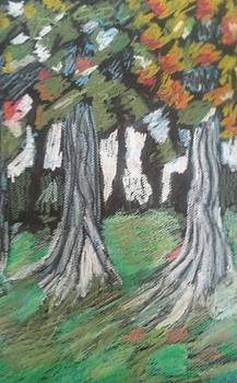 Oak Trees In Autumn by Rachel Tilseth