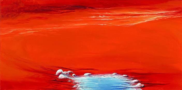 Oasis by David Junod