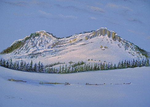 Observation Peak by Michele Myers