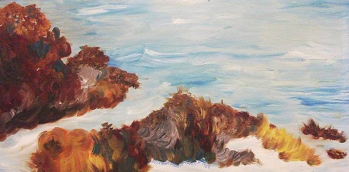 Suzanne  Marie Leclair - Ocean and Rocks