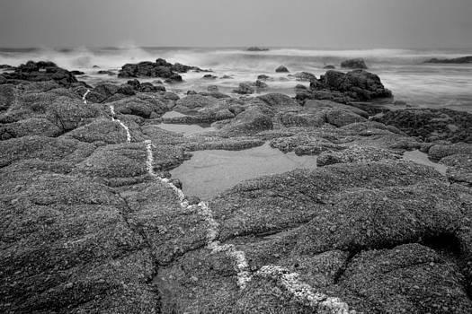 Ocean Front Property by Eric  Bjerke Sr