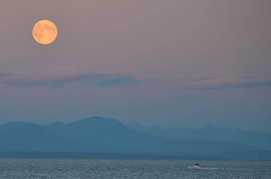 Ocean Moon by Kathy Paynter