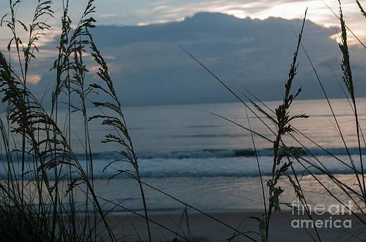 Ocean Morning by Denise Ellis