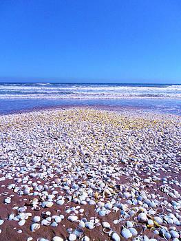 Ocean petals by Monica  Vega