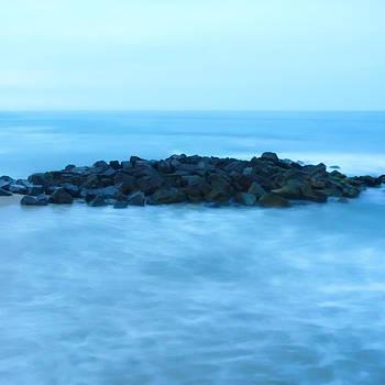 Ocean Solitude by Alina Marin-Bliach