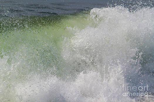 Ocean Splash by Denise Lilly