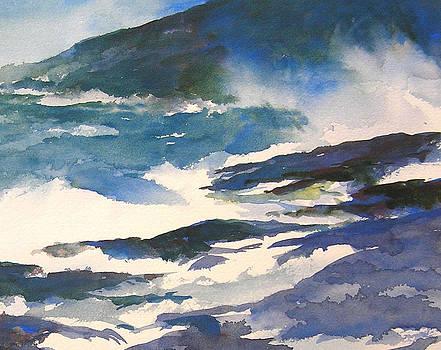 Ocean Spray by William Beaupre