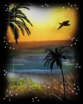 Ocean Sunrise by Andrew Sliwinski