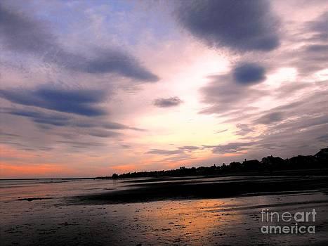 Ocean Sunset by Lisa Gifford