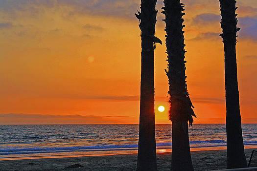 Ocean Sunset by Robbie Clayton
