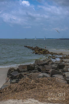 Dale Powell - Ocean View from Fort Moultrie