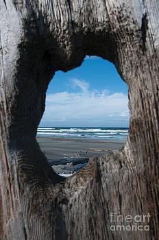 Sarah Schroder - Ocean View