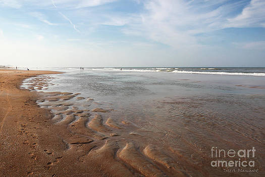 Ocean Vista by Todd Blanchard