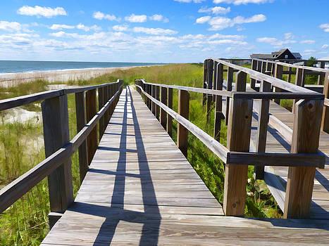 Ocean Walkway by Don Margulis
