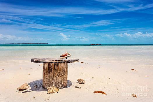 Jo Ann Snover - Oceanfront table