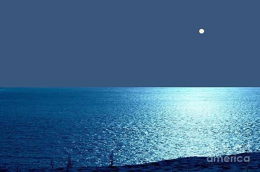 Oceano Nox by Bishopston Fine Art
