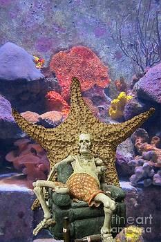 John Malone - Oceans in Danger