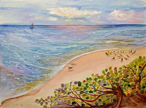 Seaside Grapes by Jane Ricker