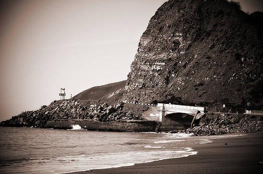 Eric Benjamin - Oceanview Bridge