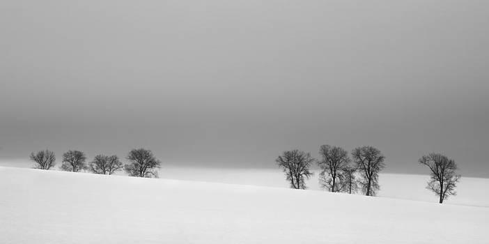 Octet by Jaromir Hron