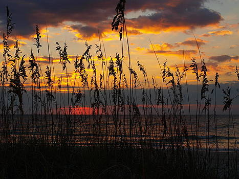 October 2013 Beach Sunrise by Kathleen Palermo
