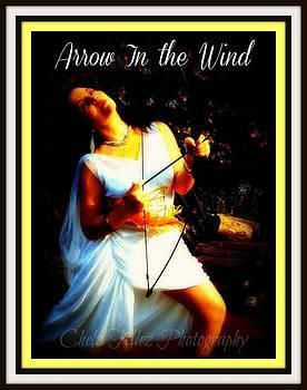 Maryann  DAmico - October Arrow In the Wind