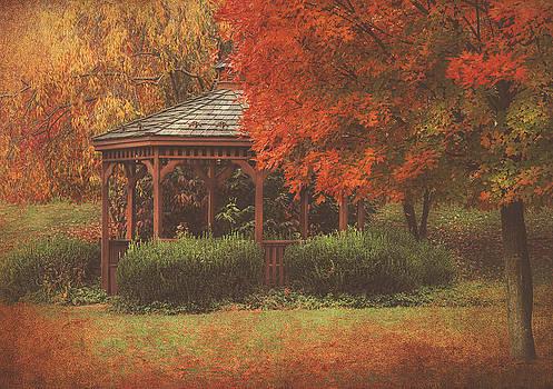 October At Deer Path Park by Pat Abbott