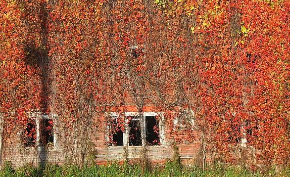 October Barn by Tom Atkins