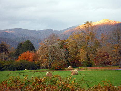 October Glimmer by Brenda Stevens Fanning