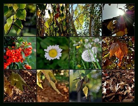 October moments by Marija Djedovic
