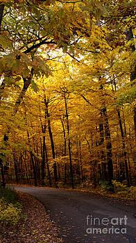Valerie Fuqua - October Road