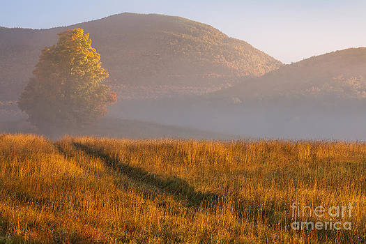 October Sunrise Landscape by Alan L Graham