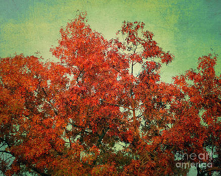 October's Finale by Sharon Kalstek-Coty