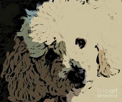 John Malone - Oddles of  Poodle