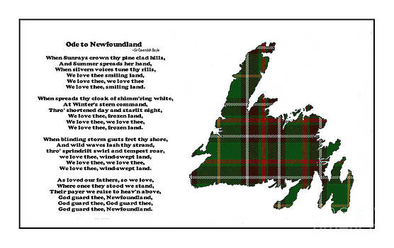 Barbara Griffin - Ode to Newfoundland with Tartan Large Plaid