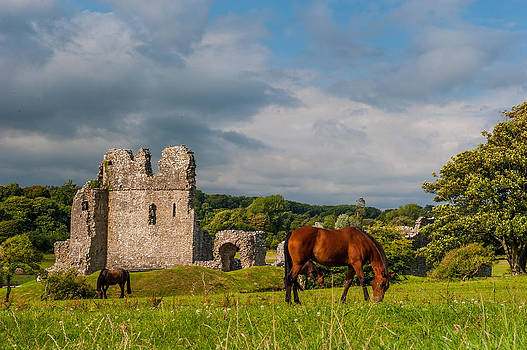 David Ross - Ogmore Castle