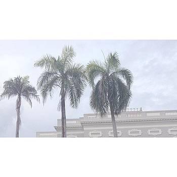 Oh How I Miss Puerto Rico by Patrick Jay