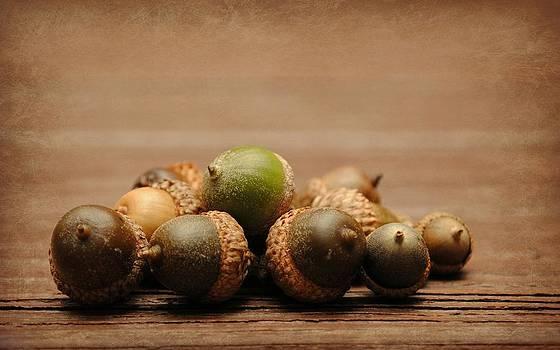 Oh Nuts by Amanda Lomonaco