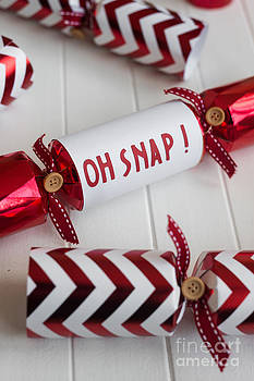 Oh Snap Cracker by Gillian Vann