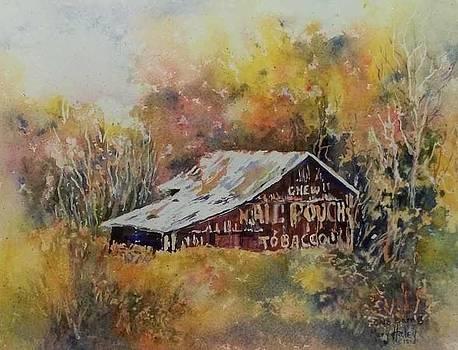 Ohio Barn 3 by Mary Haley-Rocks
