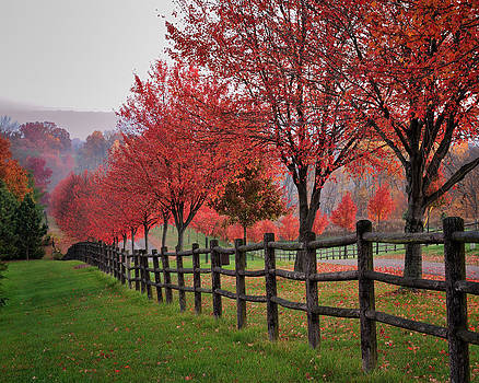 Ohio country roads in autumn  by Dick Wood
