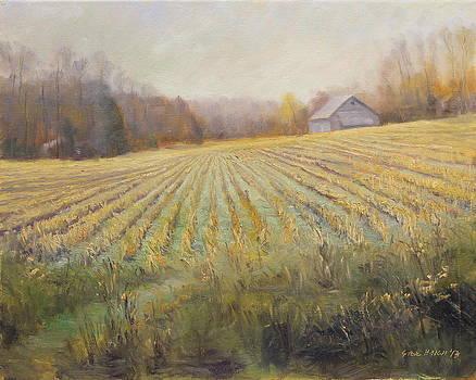 Ohio County Farm Indiana by Steve Haigh