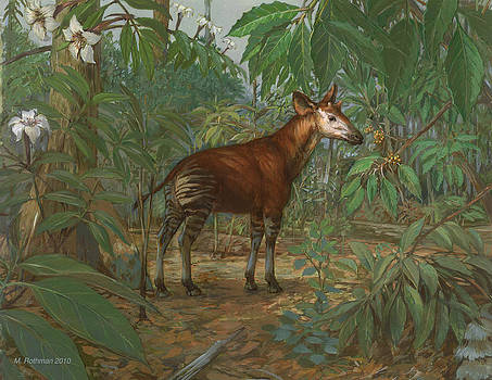 Okapi by ACE Coinage painting by Michael Rothman