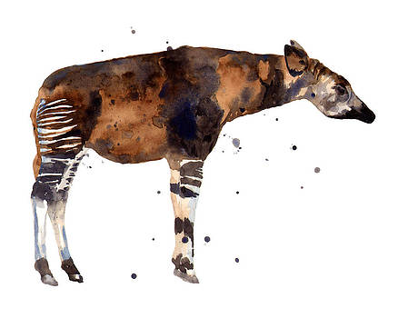 Okapi Painting by Alison Fennell