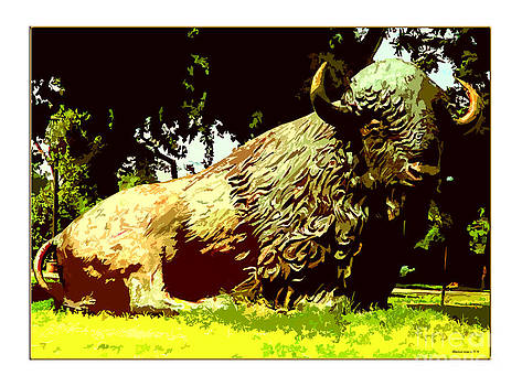 Oklahoma Buffalo by Margie Middleton