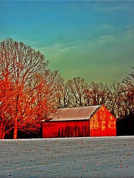 Kevin D Davis - Ol Red Barn