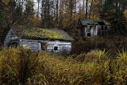 Old Abandoned Homestead by Wally Edwards