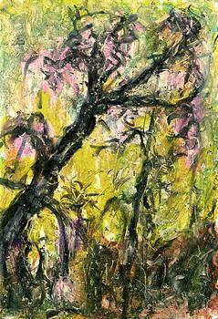 Old Acacia by Yuri Lushnichenko