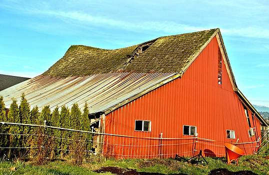 Marv Russell - Old Barn 11 Red Swayback