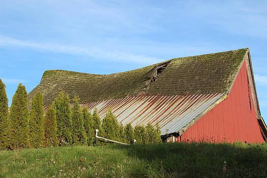 Marv Russell - Old barn 11 Swayback 2
